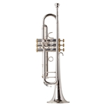 Eastman ETR520GS Trumpet w/Gold Trim [PERFORMANCE LEVEL]